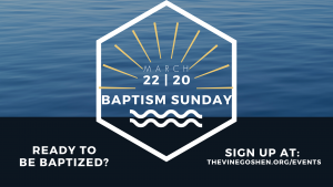 Baptism Sunday @ The Vine Church