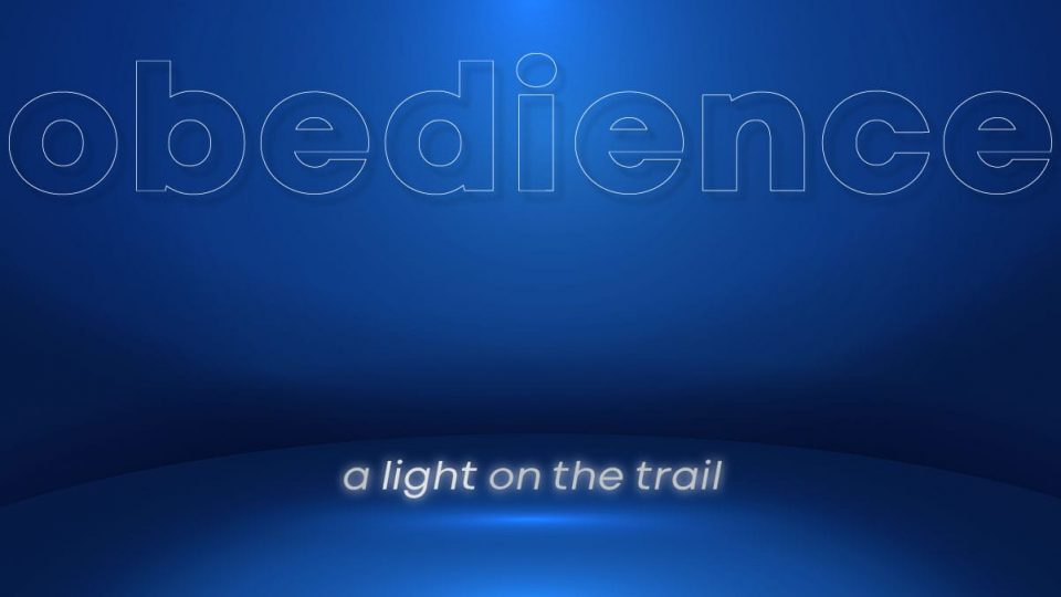 Obedience: A Light on the Trail